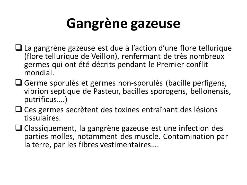 Gangrène gazeuse  La gangrène gazeuse est due à l'action d'une flore tellurique (flore tellurique de Veillon), renfermant de très nombreux germes qui ont été décrits pendant le Premier conflit mondial.