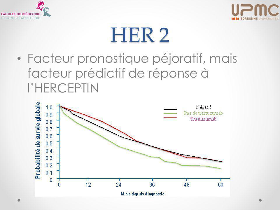 HER 2 Facteur pronostique péjoratif, mais facteur prédictif de réponse à l'HERCEPTIN