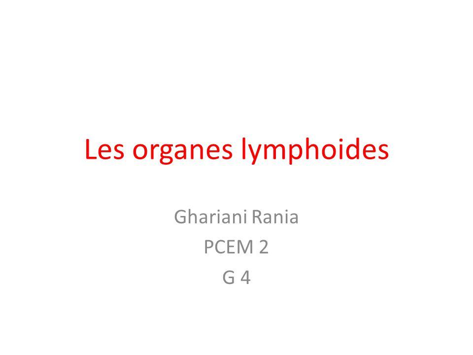 Les organes lymphoides Ghariani Rania PCEM 2 G 4