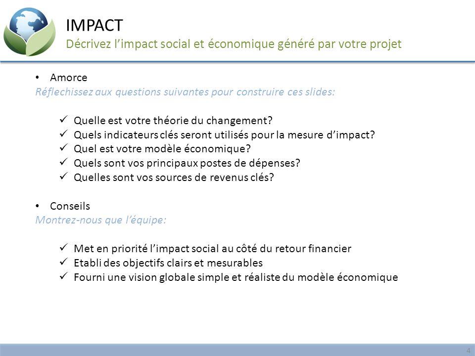 Amorce Réflechissez aux questions suivantes pour construire ces slides: Quelle est votre théorie du changement? Quels indicateurs clés seront utilisés