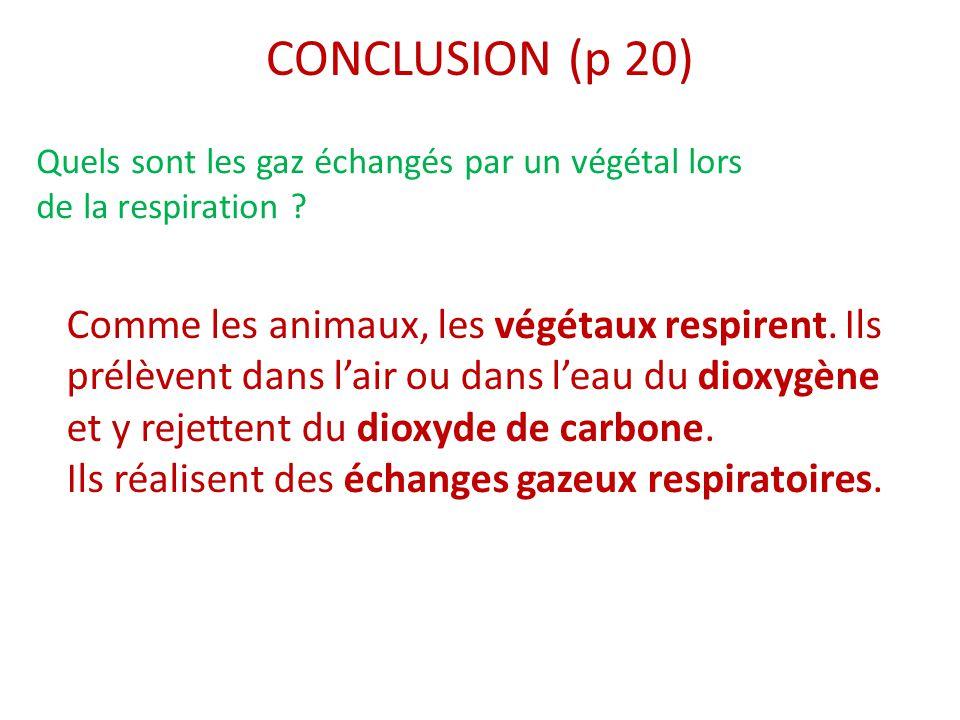 CONCLUSION (p 20) Comme les animaux, les végétaux respirent. Ils prélèvent dans l'air ou dans l'eau du dioxygène et y rejettent du dioxyde de carbone.