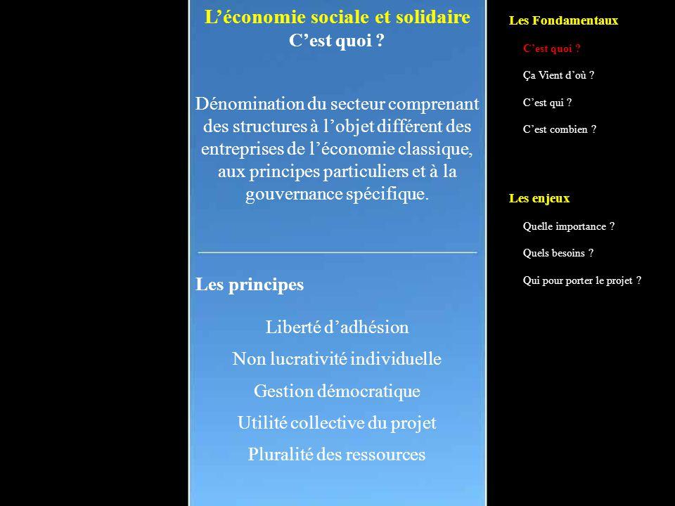 L'économie sociale et solidaire C'est quoi .