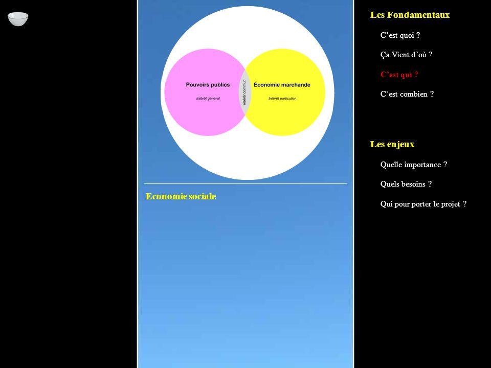 Economie sociale Les Fondamentaux C'est quoi . Ça Vient d'où .
