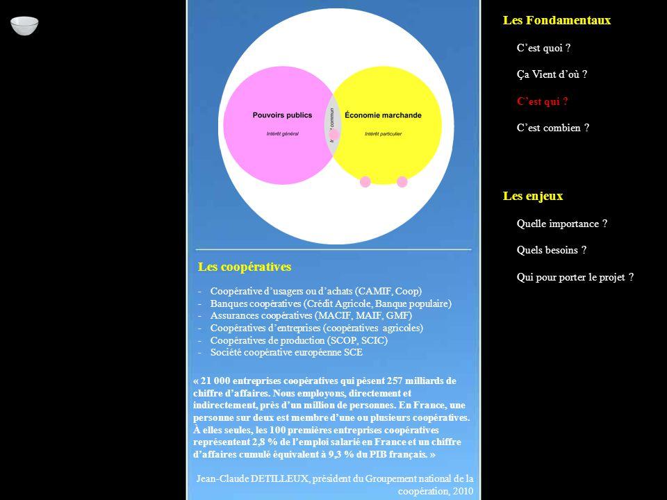 Les coopératives -Coopérative d'usagers ou d'achats (CAMIF, Coop) -Banques coopératives (Crédit Agricole, Banque populaire) -Assurances coopératives (MACIF, MAIF, GMF) -Coopératives d'entreprises (coopératives agricoles) -Coopératives de production (SCOP, SCIC) -Société coopérative européenne SCE « 21 000 entreprises coopératives qui pèsent 257 milliards de chiffre d'affaires.