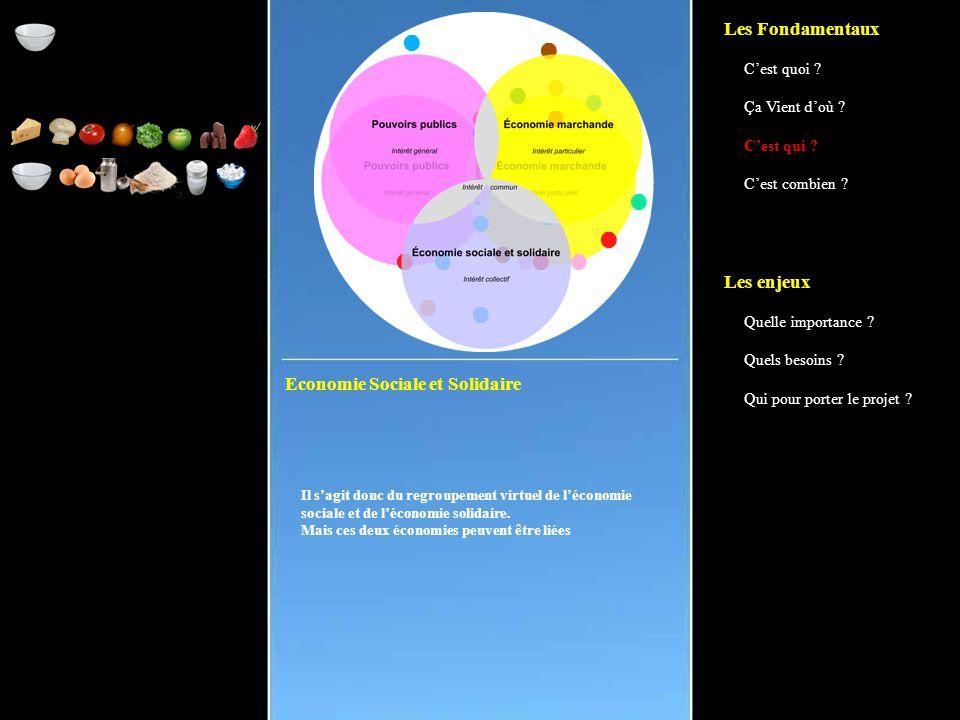 Economie Sociale et Solidaire Il s'agit donc du regroupement virtuel de l'économie sociale et de l'économie solidaire.