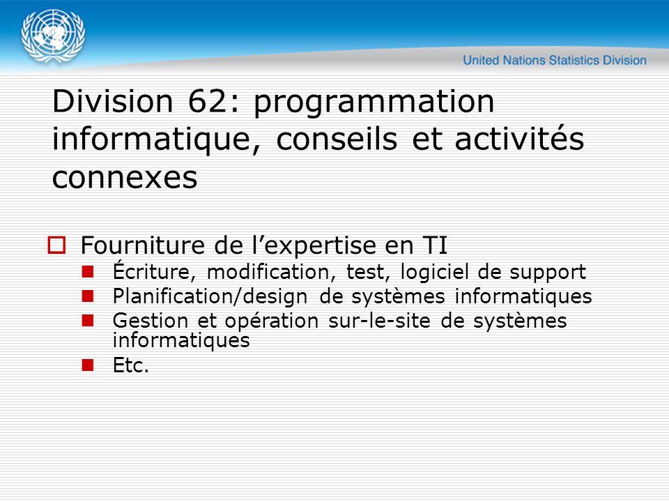 Division 62: programmation informatique, conseils et activités connexes  Fourniture de l'expertise en TI Écriture, modification, test, logiciel de support Planification/design de systèmes informatiques Gestion et opération sur-le-site de systèmes informatiques Etc.