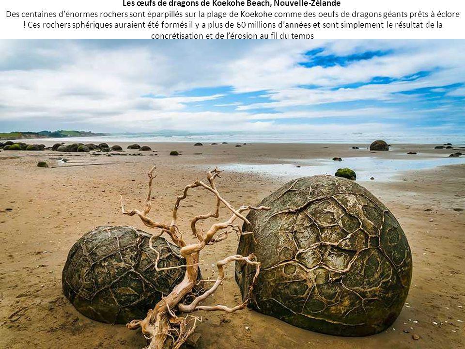 Les œufs de dragons de Koekohe Beach, Nouvelle-Zélande Des centaines d'énormes rochers sont éparpillés sur la plage de Koekohe comme des oeufs de drag