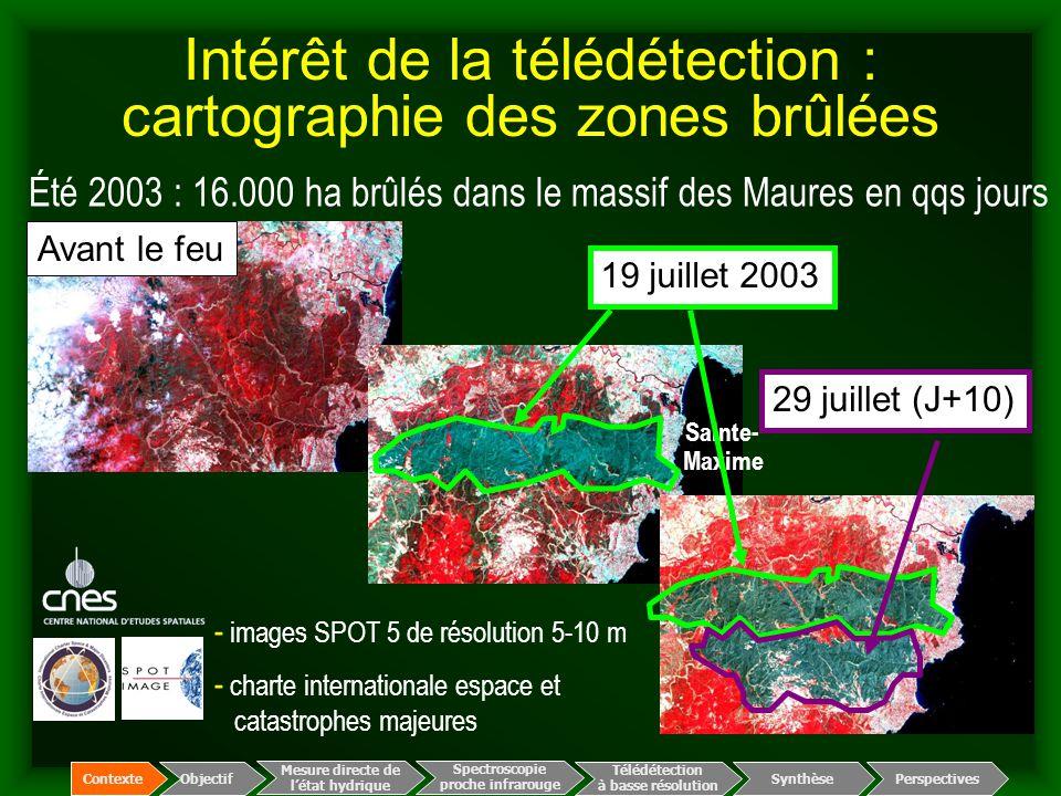Été 2003 : 16.000 ha brûlés dans le massif des Maures en qqs jours - images SPOT 5 de résolution 5-10 m - charte internationale espace et catastrophes