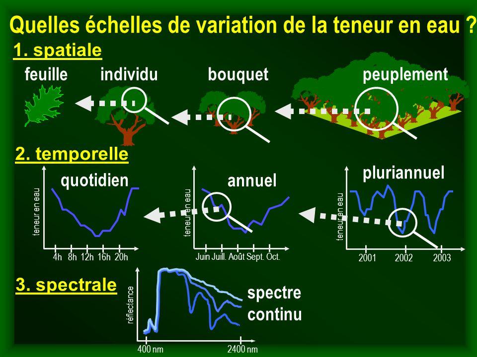 Quelles échelles de variation de la teneur en eau ? 2. temporelle 3. spectrale 1. spatiale individufeuille pluriannuel 2001 2002 2003 teneur en eau bo