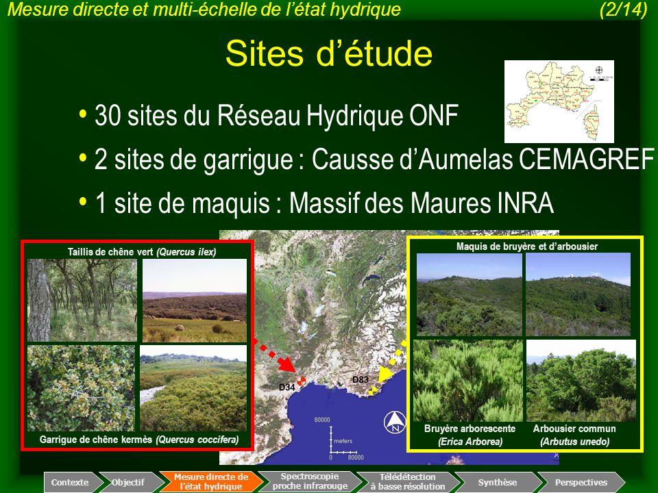 Sites d'étude 30 sites du Réseau Hydrique ONF 2 sites de garrigue : Causse d'Aumelas CEMAGREF Garrigue de chêne kermès (Quercus coccifera) Taillis de