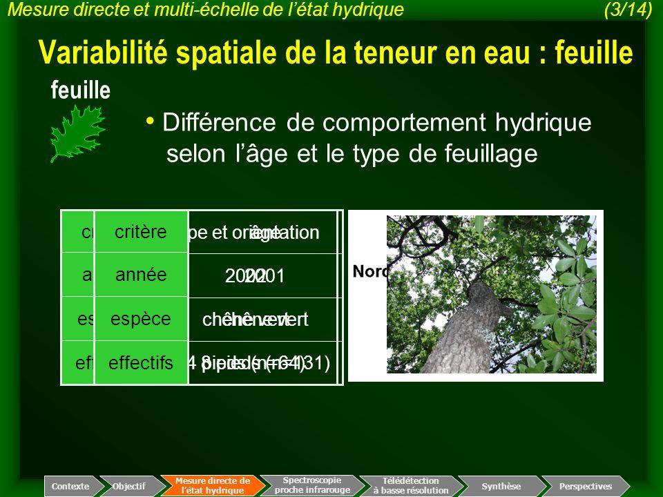 4 pieds (n=64) chêne vert 2002 type et orientation effectifs espèce année critère Variabilité spatiale de la teneur en eau : feuille Spectroscopie pro
