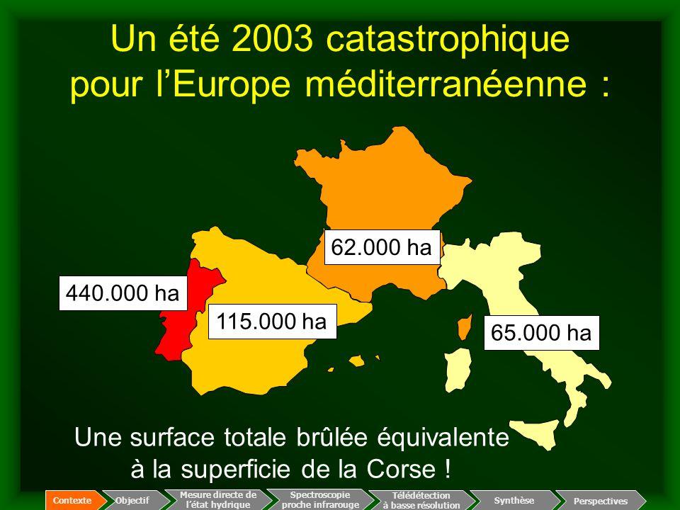 Un été 2003 catastrophique pour l'Europe méditerranéenne : 65.000 ha 62.000 ha 115.000 ha 440.000 ha Une surface totale brûlée équivalente à la superf