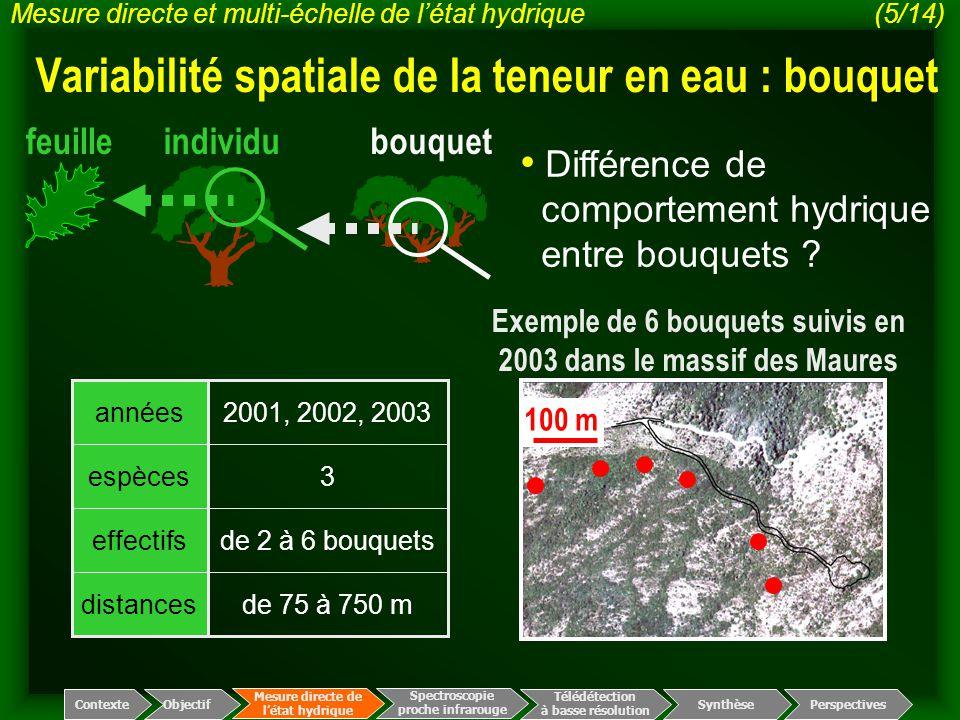 Exemple de 6 bouquets suivis en 2003 dans le massif des Maures 100 m distances effectifs espèces années de 75 à 750 m de 2 à 6 bouquets 3 2001, 2002,