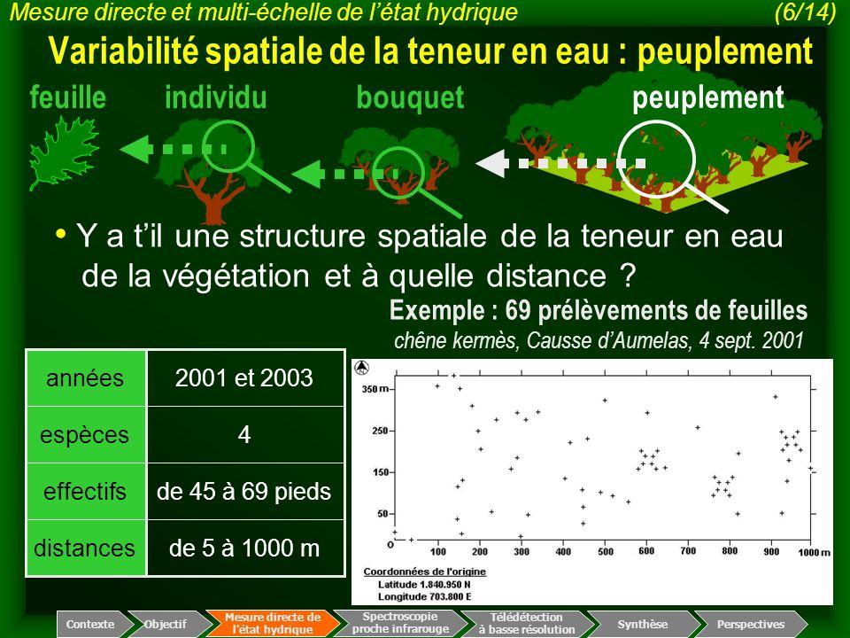 individufeuillebouquet peuplement Exemple : 69 prélèvements de feuilles chêne kermès, Causse d'Aumelas, 4 sept. 2001 de 5 à 1000 mdistances de 45 à 69
