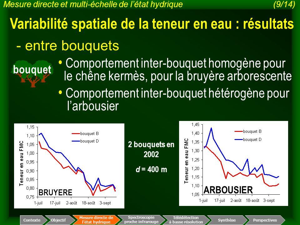 bouquet - entre bouquets Spectroscopie proche infrarouge Télédétection à basse résolution Mesure directe de l'état hydrique ContexteObjectif Perspecti
