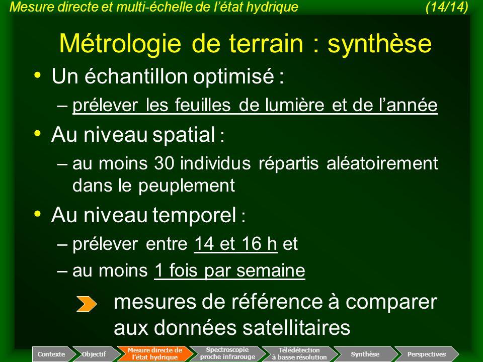 Métrologie de terrain : synthèse Un échantillon optimisé : –prélever les feuilles de lumière et de l'année Au niveau spatial : –au moins 30 individus