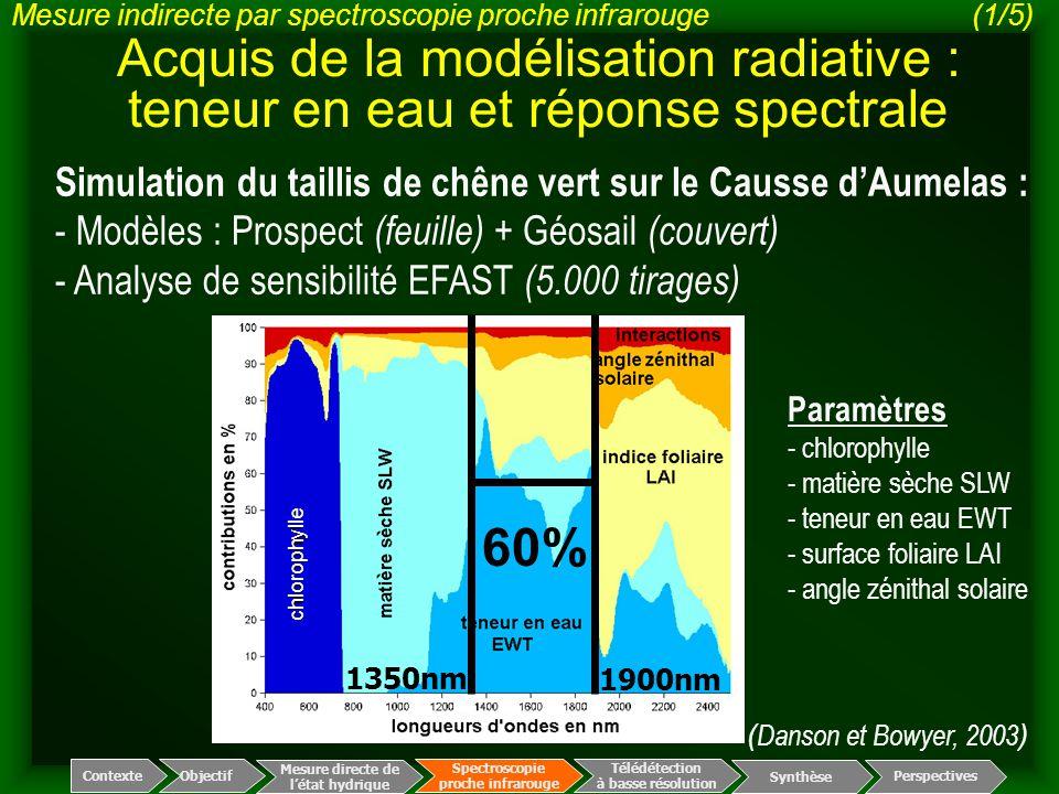 Acquis de la modélisation radiative : teneur en eau et réponse spectrale Simulation du taillis de chêne vert sur le Causse d'Aumelas : - Modèles : Pro