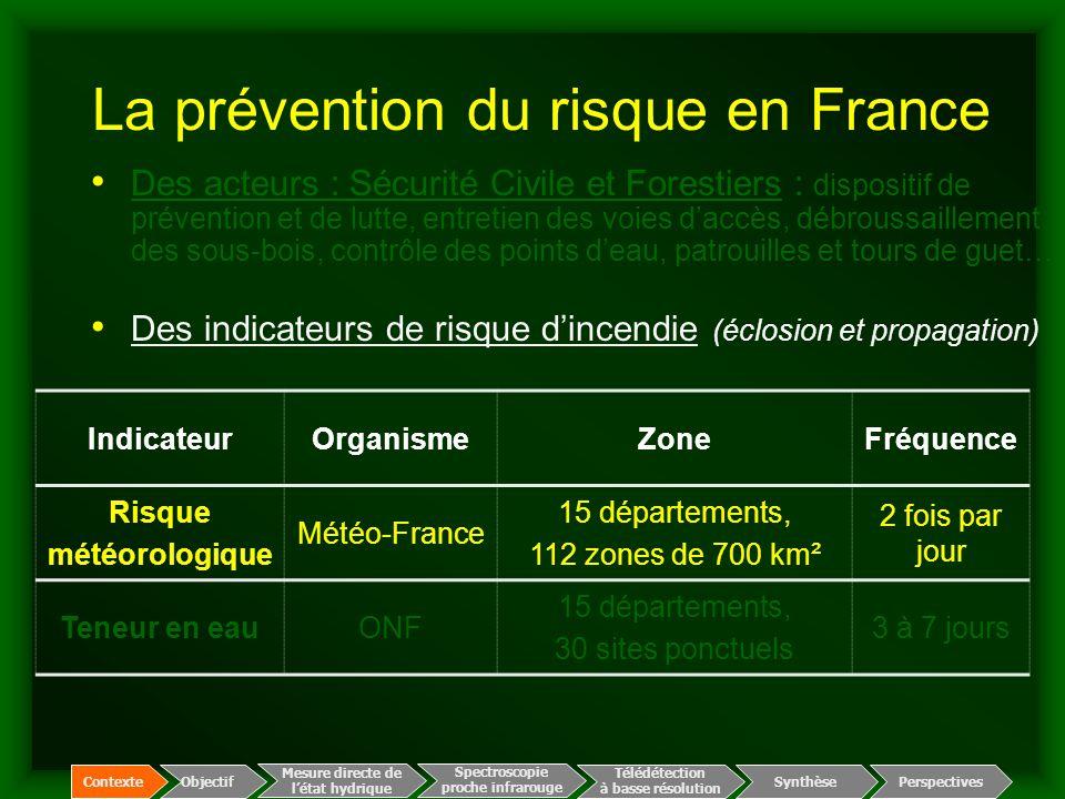 Indicateur météorologique du risque (Météo-France) Cartographie du risque météorologique –basé sur le modèle de risque Canadien (3 réservoirs) –4 paramètres météo (température, humidité, pluie, vent) –112 zones de risque (700 km² en moyenne) –6 niveaux de risque –2 fois par jour Animation : risque prévu fort faible 24 juillet  13 août 2001 Spectroscopie proche infrarouge Télédétection à basse résolution Mesure directe de l'état hydrique ContexteObjectif Perspectives Synthèse