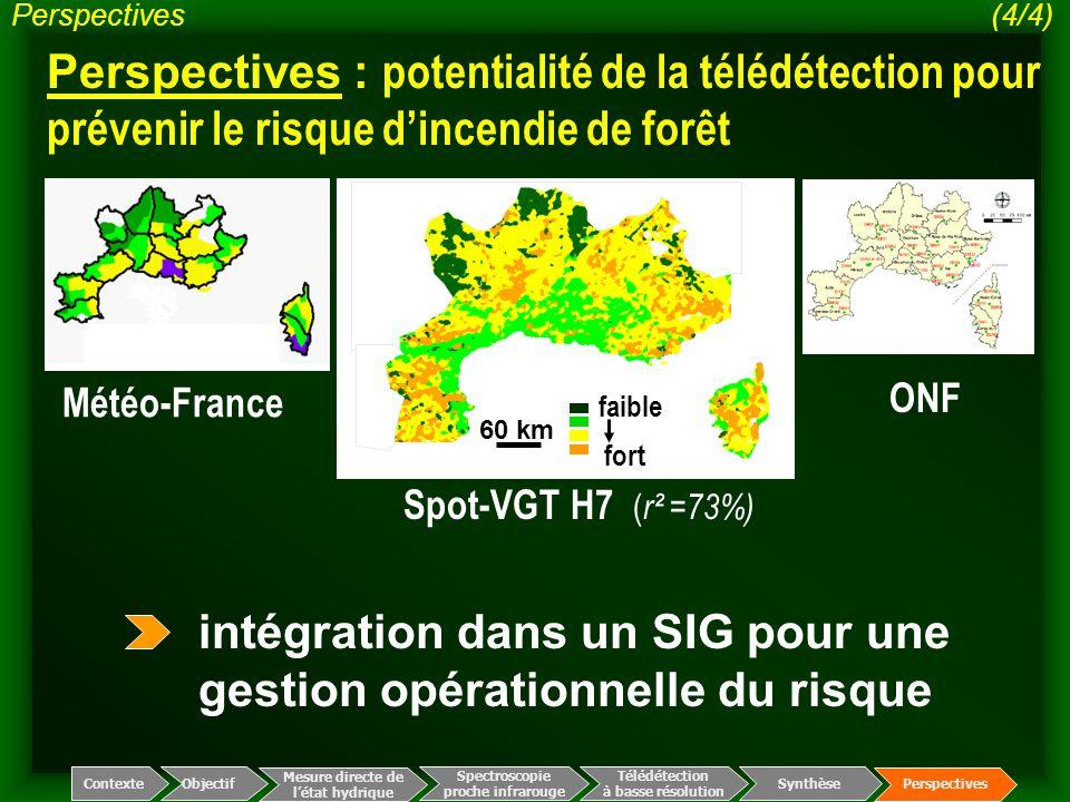 Spectroscopie proche infrarouge Télédétection à basse résolution Mesure directe de l'état hydrique ContexteObjectif Perspectives Synthèse Perspectives