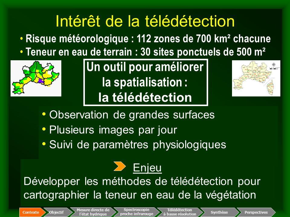 Été 2003 : 16.000 ha brûlés dans le massif des Maures en qqs jours - images SPOT 5 de résolution 5-10 m - charte internationale espace et catastrophes majeures Avant le feu 19 juillet 2003 Sainte- Maxime 29 juillet (J+10) Spectroscopie proche infrarouge Télédétection à basse résolution Mesure directe de l'état hydrique ContexteObjectif Perspectives Synthèse Intérêt de la télédétection : cartographie des zones brûlées
