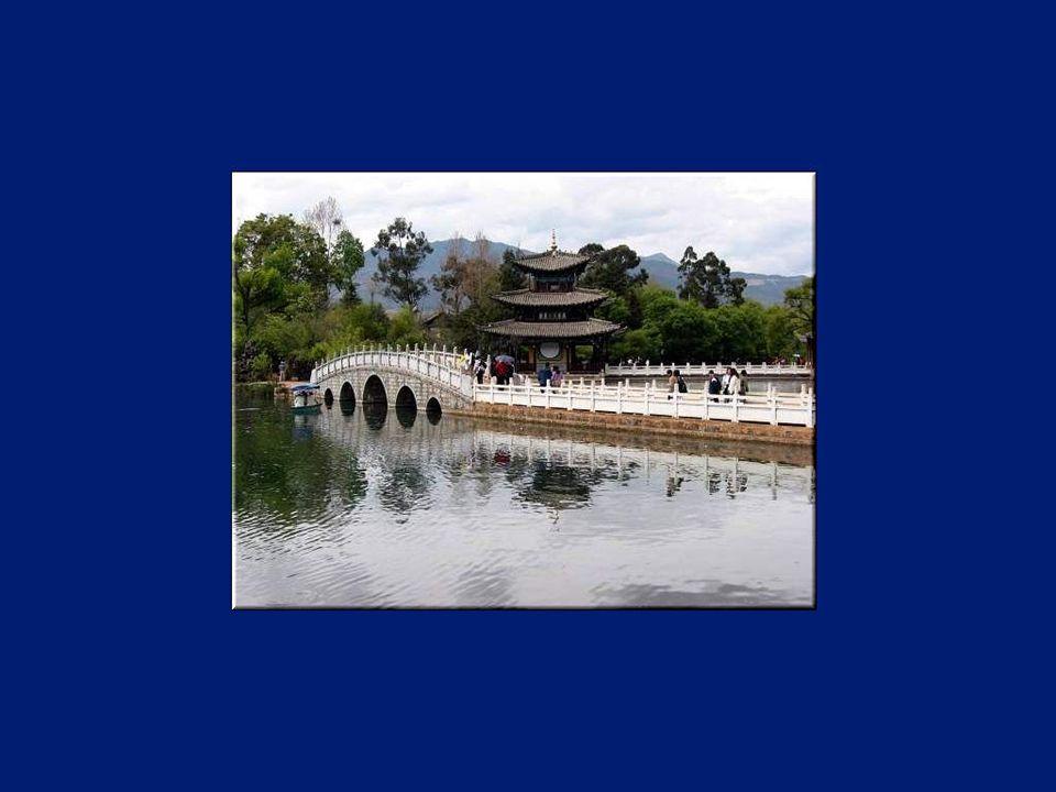 Les principales ethnies asiatiques ou mongoles du Yunnan sont les Yi, les Bai, les Hani, les Zhuang, les Dai, les Miao, les Lisu, les Hui, les Lahu, les Va, les Naxi, les Yao, les Tibétains, les Jingpo, les Bulang, les Pumi, les Nu, les Achang, les Jino, les Drung, les Mandchous, les Sui, les Bouyei et les Mongols.