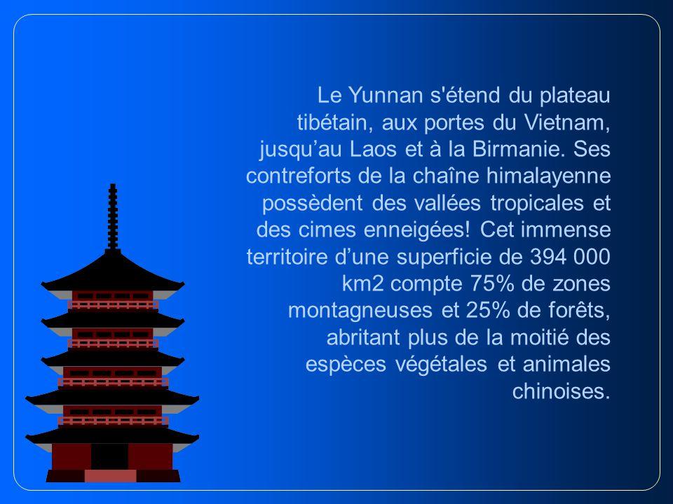 Au dernier recensement de la Chine, la province du Yunnan comptait 41 millions d habitants, avec un taux de croissance démographique de 12 p.cent.