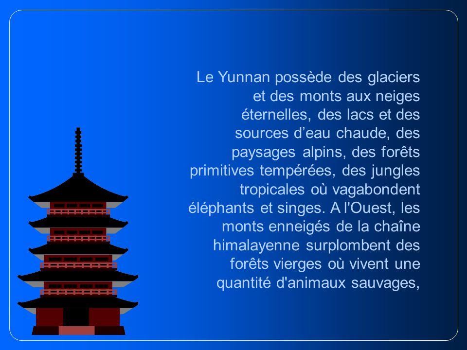 Le Yunnan possède des glaciers et des monts aux neiges éternelles, des lacs et des sources d'eau chaude, des paysages alpins, des forêts primitives tempérées, des jungles tropicales où vagabondent éléphants et singes.