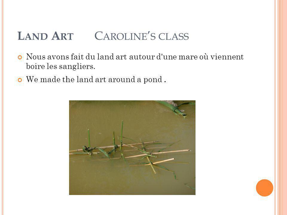 L AND A RT C AROLINE ' S CLASS Nous avons fait du land art autour d une mare où viennent boire les sangliers.