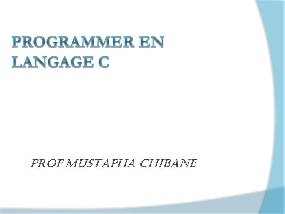 Prof Mustapha chibane