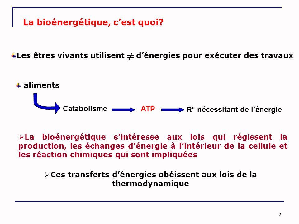 2 La bioénergétique, c'est quoi? Catabolisme ATP R° nécessitant de l'énergie aliments  La bioénergétique s'intéresse aux lois qui régissent la produc