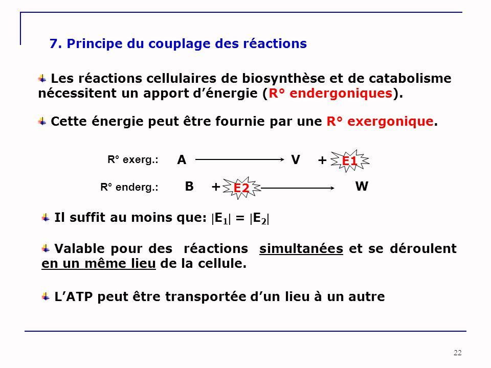 22 7. Principe du couplage des réactions Les réactions cellulaires de biosynthèse et de catabolisme nécessitent un apport d'énergie (R° endergoniques)