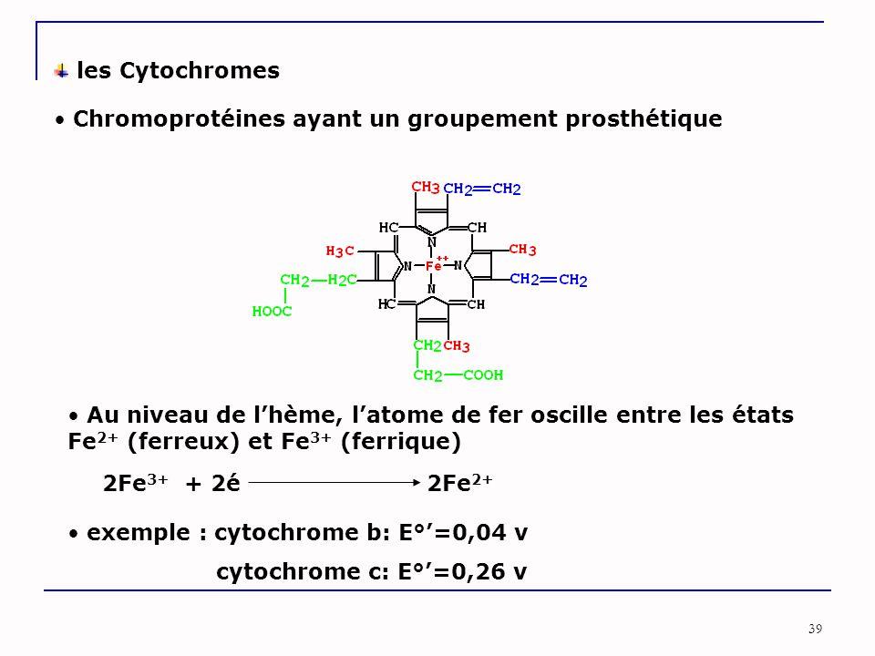 39 les Cytochromes Chromoprotéines ayant un groupement prosthétique Au niveau de l'hème, l'atome de fer oscille entre les états Fe 2+ (ferreux) et Fe 3+ (ferrique) 2Fe 3+ + 2é 2Fe 2+ exemple : cytochrome b: E°'=0,04 v cytochrome c: E°'=0,26 v