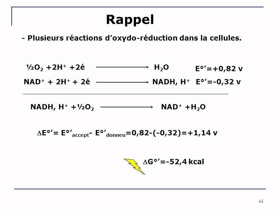 43 Rappel - Plusieurs réactions d'oxydo-réduction dans la cellules. ½O 2 +2H + +2é H 2 O NAD + + 2H + + 2é NADH, H + E°'=+0,82 v E°'=-0,32 v G°'=-52,