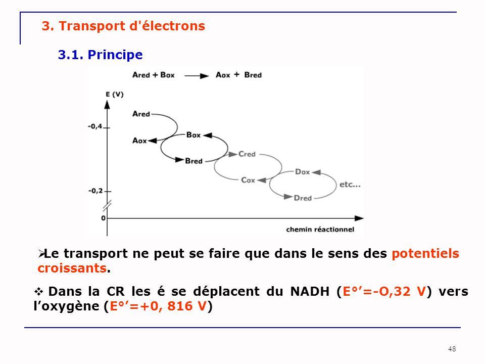 48 3. Transport d'électrons 3.1. Principe  Le transport ne peut se faire que dans le sens des potentiels croissants.  Dans la CR les é se déplacent