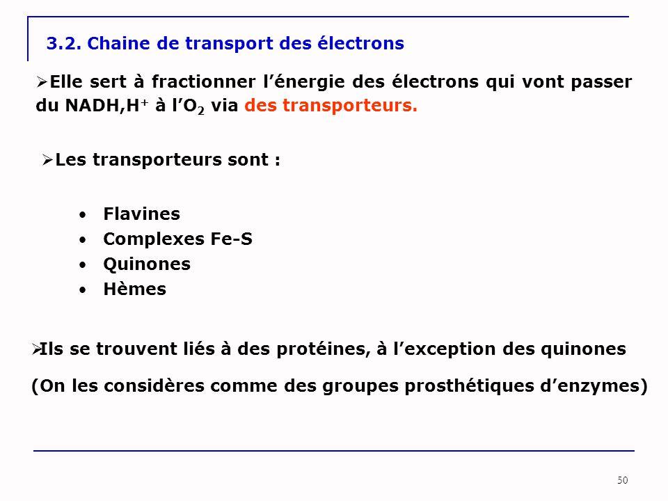 50 3.2. Chaine de transport des électrons  Elle sert à fractionner l'énergie des électrons qui vont passer du NADH,H + à l'O 2 via des transporteurs.