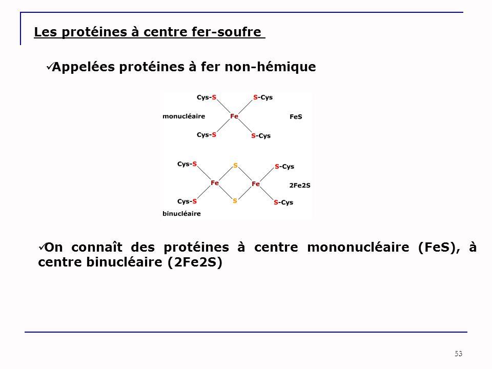53 Les protéines à centre fer-soufre Appelées protéines à fer non-hémique On connaît des protéines à centre mononucléaire (FeS), à centre binucléaire