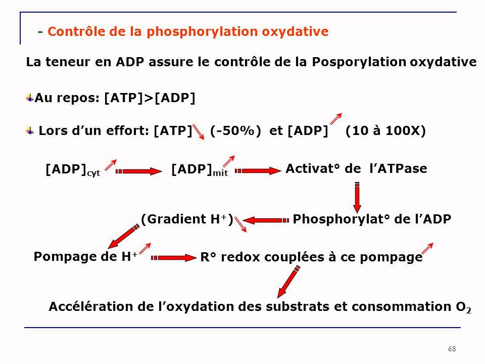 68 - Contrôle de la phosphorylation oxydative Au repos: [ATP]>[ADP] Lors d'un effort: [ATP] (-50%) et [ADP] (10 à 100X) [ADP] cyt [ADP] mit Activat° de l'ATPase Phosphorylat° de l'ADP(Gradient H + ) Pompage de H + R° redox couplées à ce pompage Accélération de l'oxydation des substrats et consommation O 2 La teneur en ADP assure le contrôle de la Posporylation oxydative