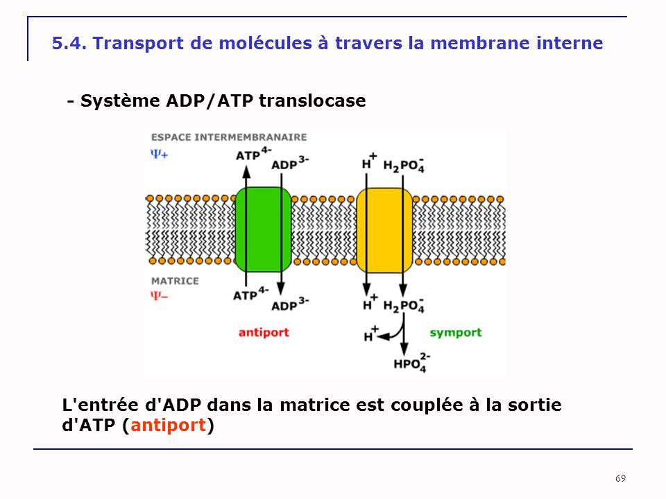 69 5.4. Transport de molécules à travers la membrane interne - Système ADP/ATP translocase L'entrée d'ADP dans la matrice est couplée à la sortie d'AT
