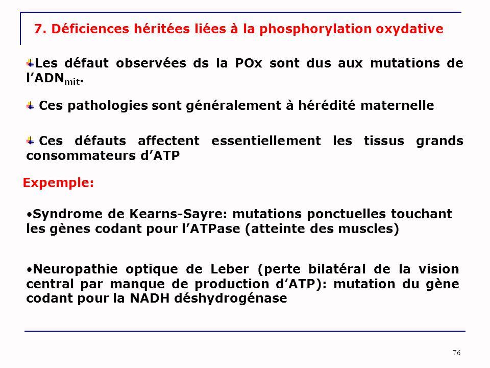76 7. Déficiences héritées liées à la phosphorylation oxydative Les défaut observées ds la POx sont dus aux mutations de l'ADN mit. Ces défauts affect