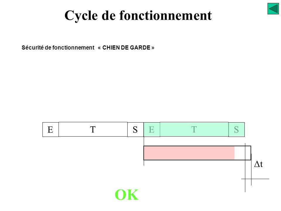 Cycle de fonctionnement E T SE T S temporisation Δt Sécurité de fonctionnement « CHIEN DE GARDE » OK validation de la temporisation réarmement de la t