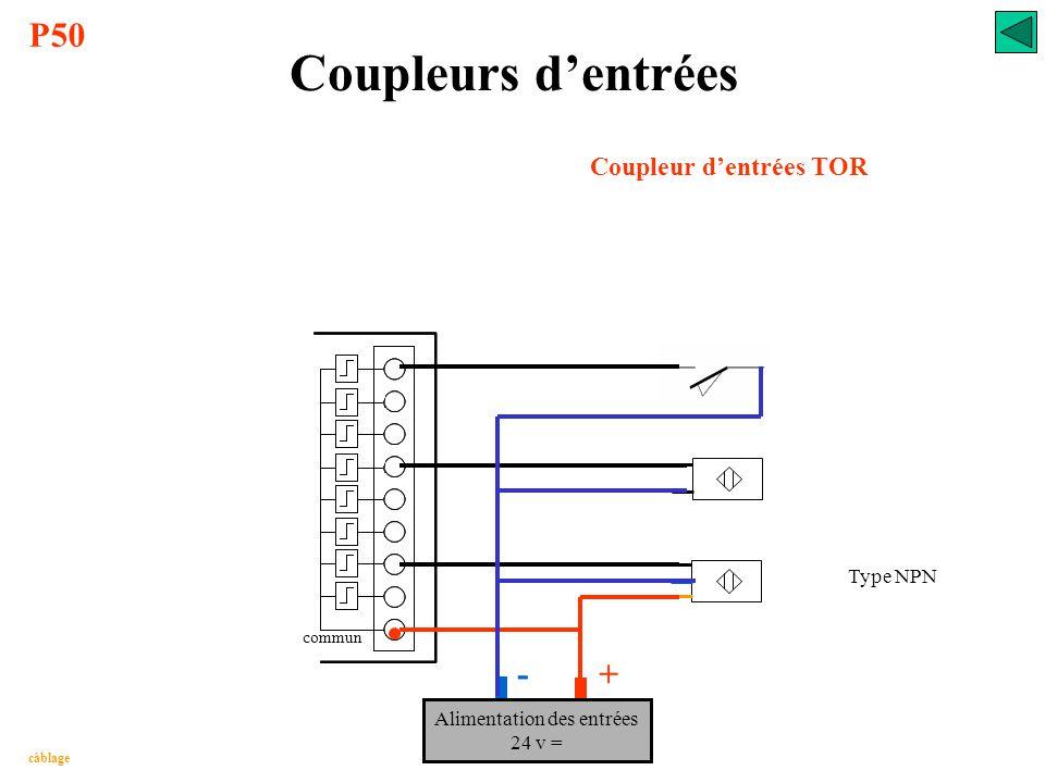 Coupleurs d'entrées Coupleur d'entrées TOR Type PNP câblage Alimentation des entrées 24 v = - + P50 commun
