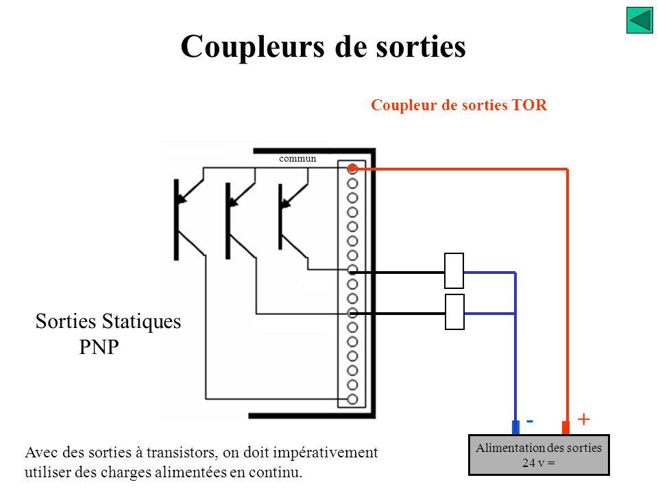 Coupleurs de sorties Coupleur de sorties TOR Sorties statiques NPN Alimentation des sorties 24 v = - + commun