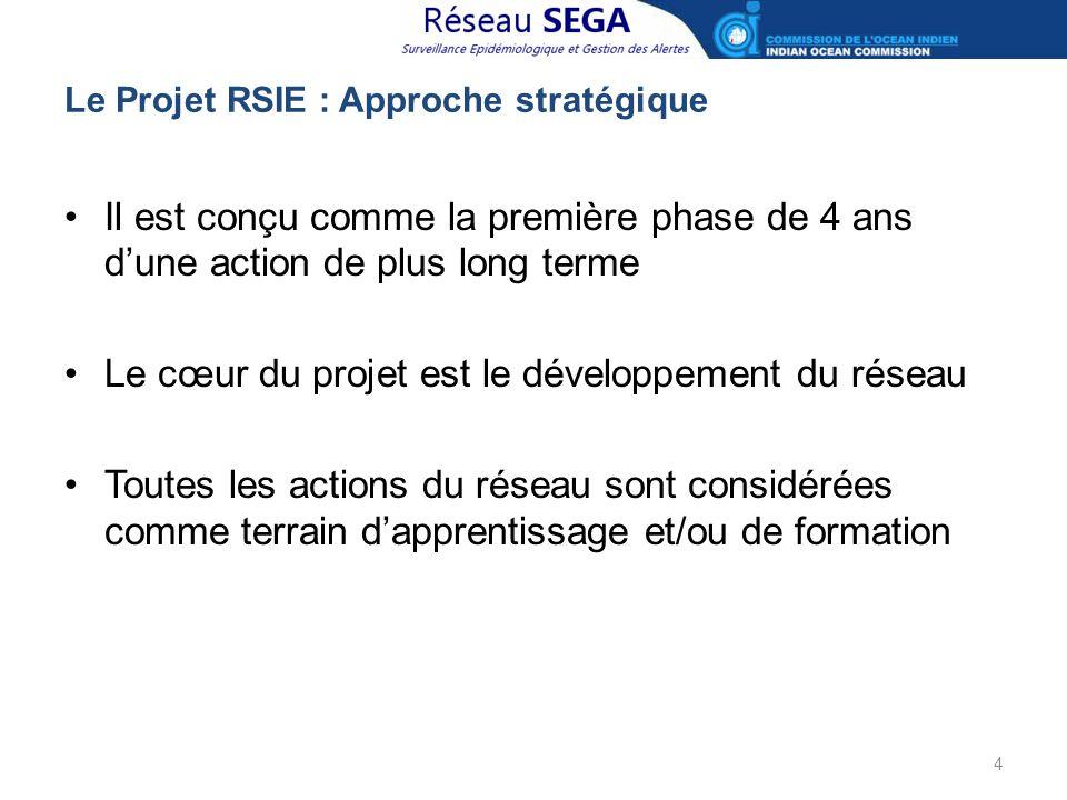Le Projet RSIE : Approche stratégique Il est conçu comme la première phase de 4 ans d'une action de plus long terme Le cœur du projet est le développe