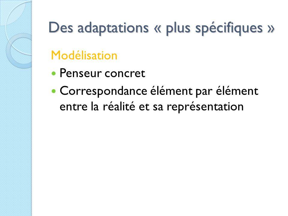 Des adaptations « plus spécifiques » Modélisation Penseur concret Correspondance élément par élément entre la réalité et sa représentation