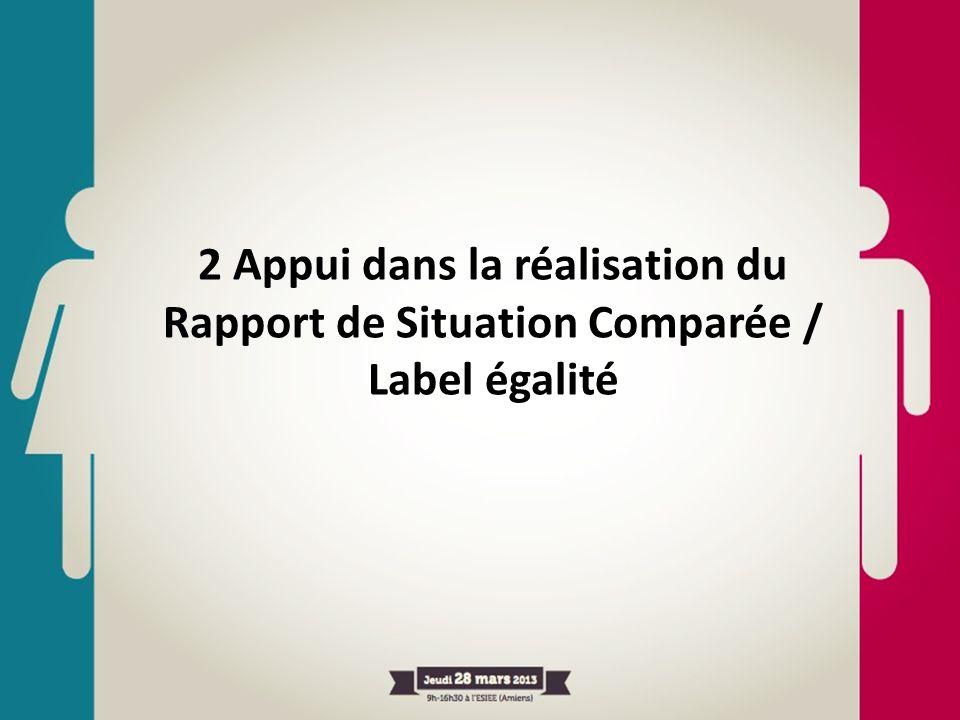 2 Appui dans la réalisation du Rapport de Situation Comparée / Label égalité