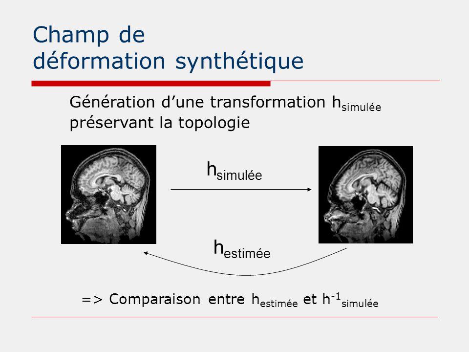Champ de déformation synthétique h simulée Génération d'une transformation h simulée préservant la topologie h estimée => Comparaison entre h estimée