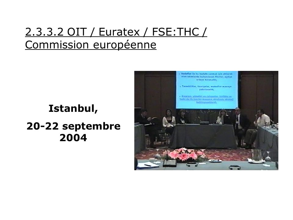 2.3.3.3 Brands / Bulgarie The Bulgarian Apparel Industry- A Leader in Corporate Social Responsibility - 11-12 novembre 2004 Certains partenaires au projet :
