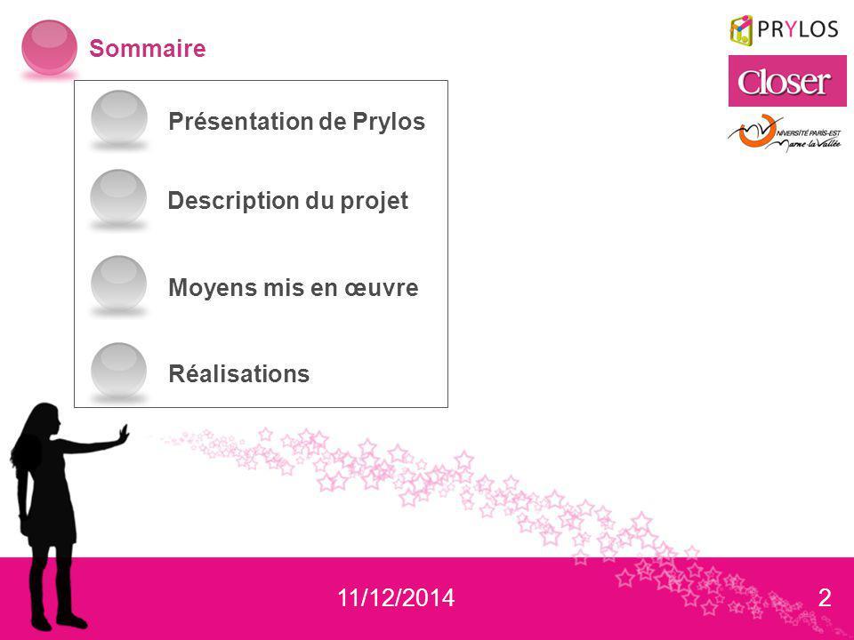 3 Présentation de Prylos Description du projet Moyens mis en œuvre Réalisations Présentation de Prylos Prylos a été crée en 2003 par 2 associés David Lacan et Caroline Noublanche.
