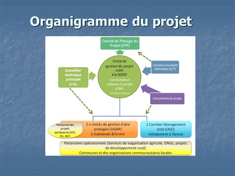 Organigramme du projet