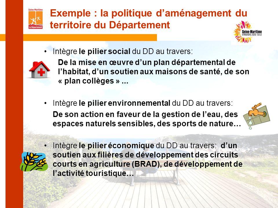 Intègre le pilier social du DD au travers: De la mise en œuvre d'un plan départemental de l'habitat, d'un soutien aux maisons de santé, de son « plan collèges »...